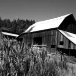 Myrtle Creek – un exercice de style en fingerpicking